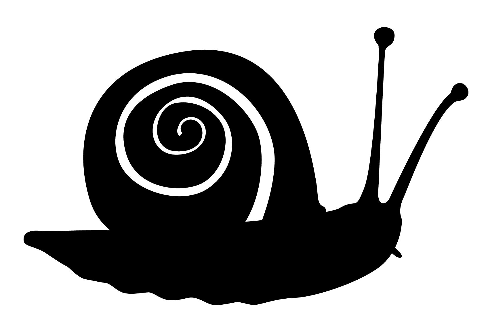 貝類を通して生命現象に迫る 1